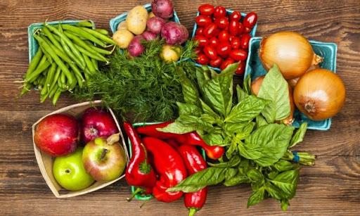 Día Nacional de la Sanidad Vegetal